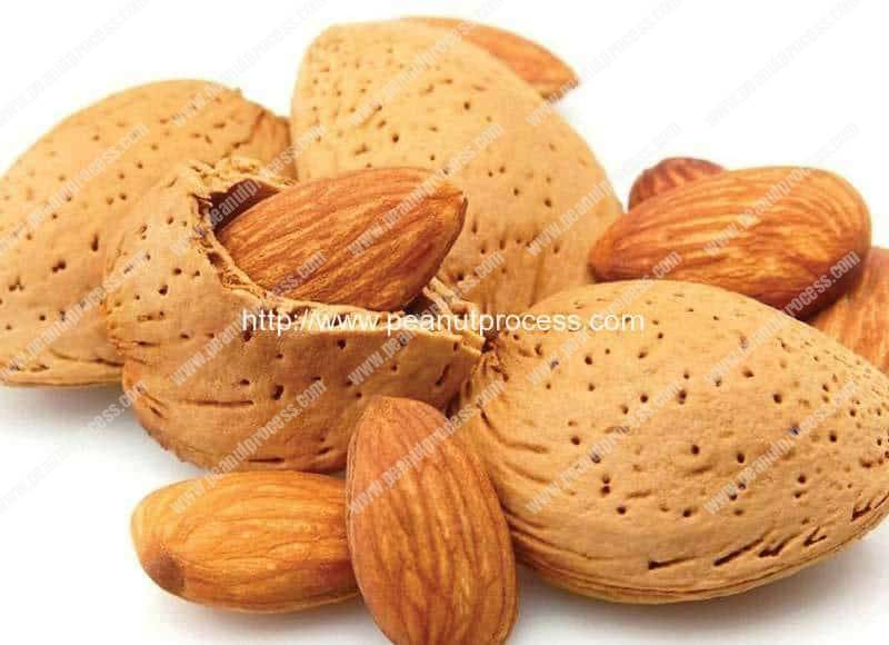 Almond-Cracking-and-Shelling-Machine