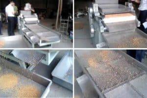 Automatic-Peanut-Kernal-Crushing-and-Particle-Size-Sorting-Machine