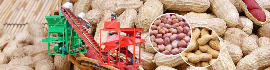 Banner04-Peanut-Shelling-Machine-and-Sorting-Machine