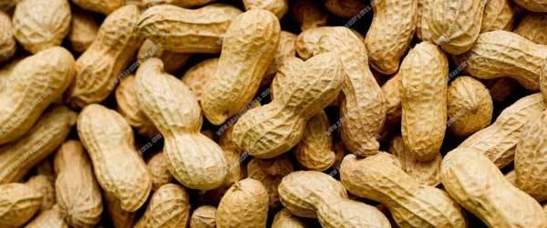 How-to-Storage-Peanut