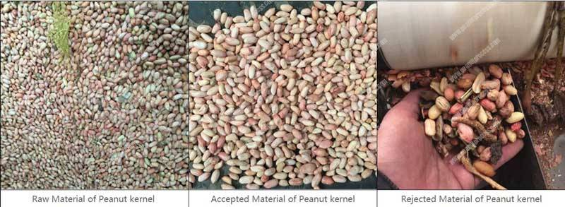 Automatic-Peanut-Kernel-Color-Sorting-Machine