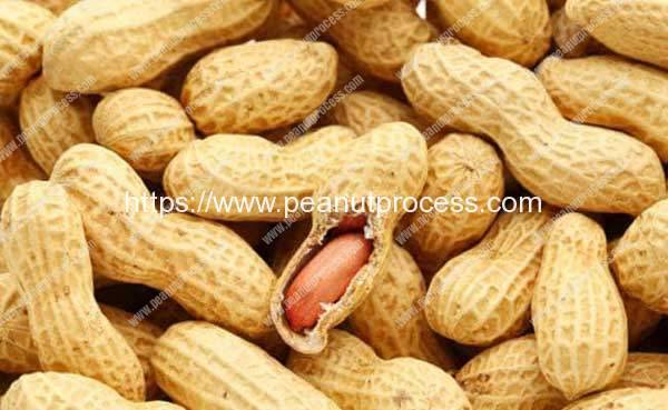 Peanuts For Weight Loss Here's How Peanuts May Help You Shed Kilos