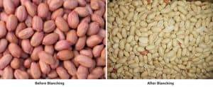 Automatic-Blanched-Peanut-Production-Line