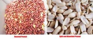 Automatic-Peanut-Splitting-and-Blanching-Machine Result