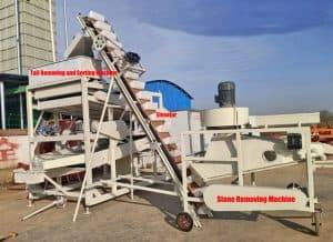 Automatic Peanut Tail Removing and Sorting Machine
