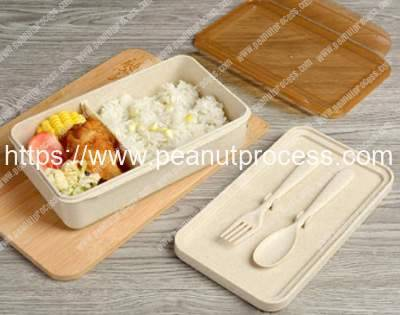 Manufacture-of-food-containers